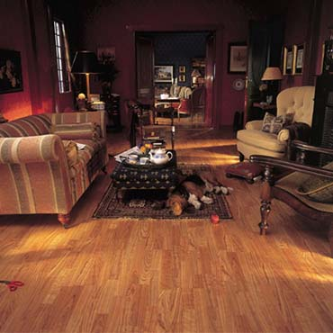 Alloc Laminate Flooring | McComb, MS