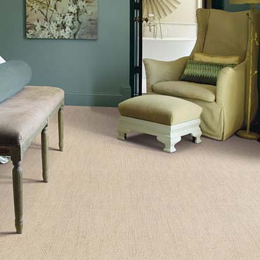 Caress Carpet by Shaw | McComb, MS